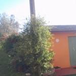 Ristorante-nonna-tina-montagna-pistoiese-4